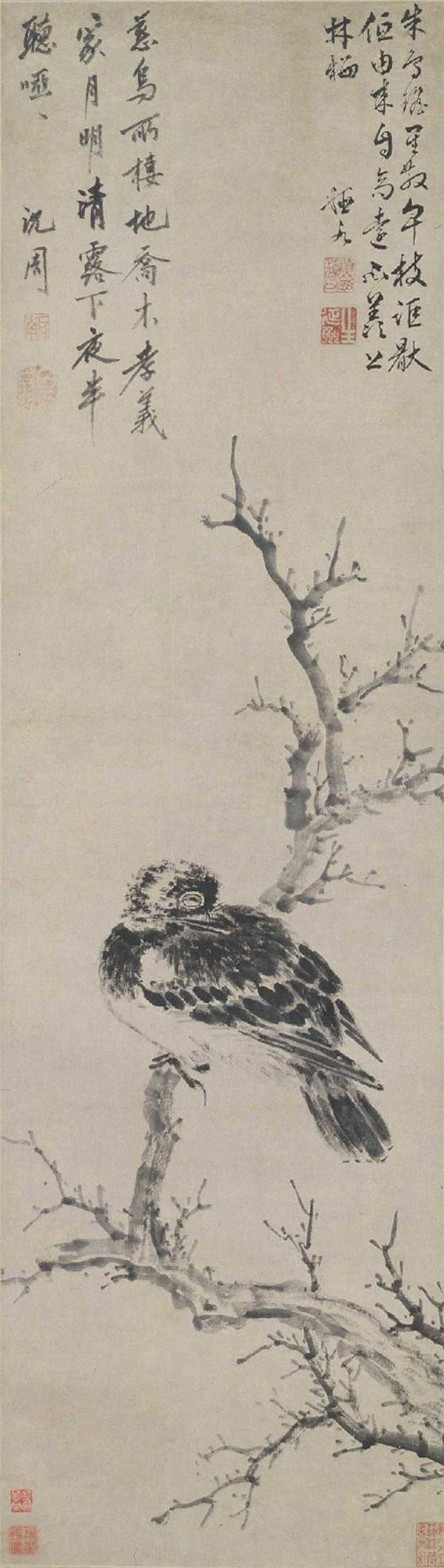 shen-zhou_filial-crow
