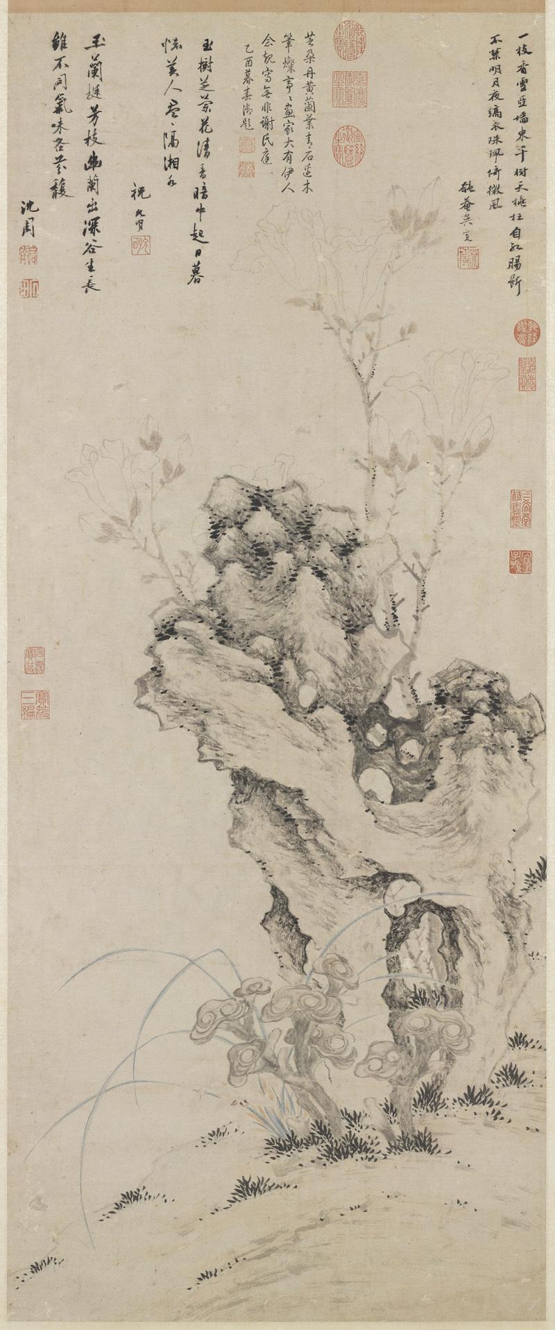 shen-zhou_lingzhi-orchid-magnolia-rock