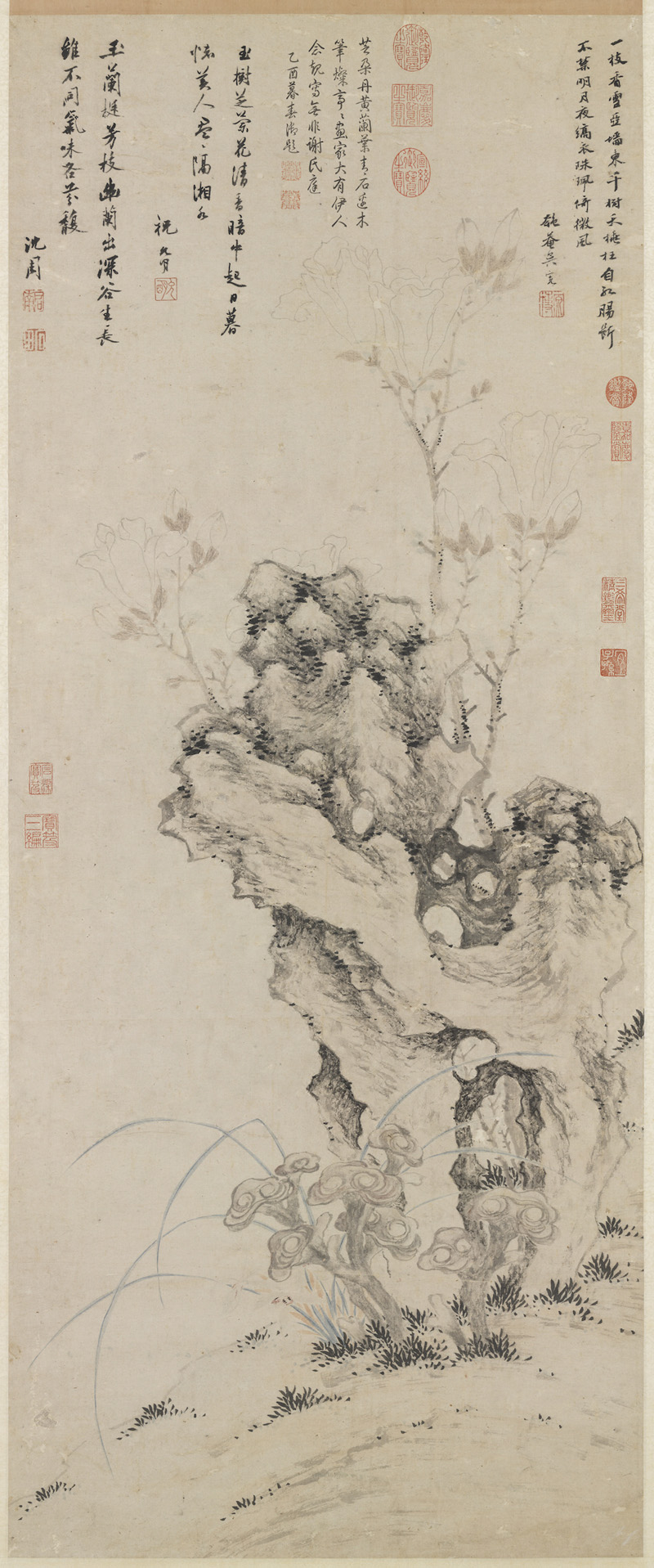 Lingzhi, Orchid, Magnolia and Rock