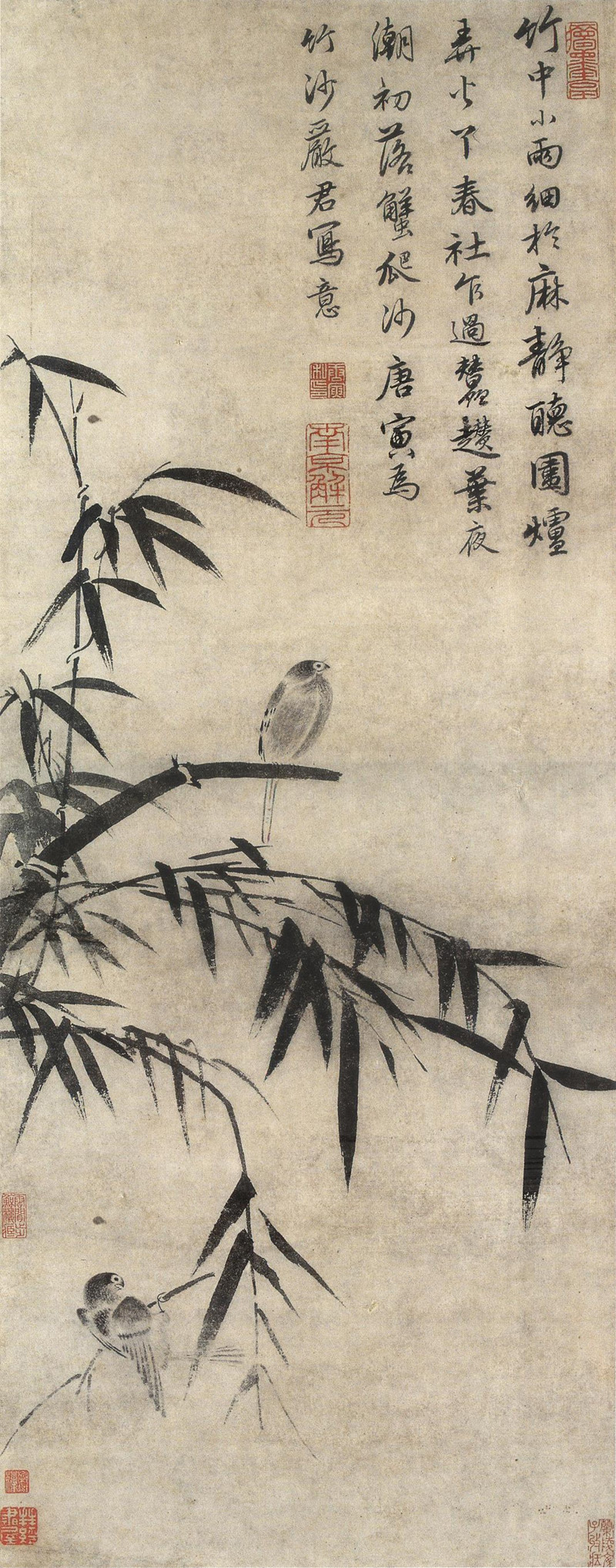 Birds and Bamboos in the Rain