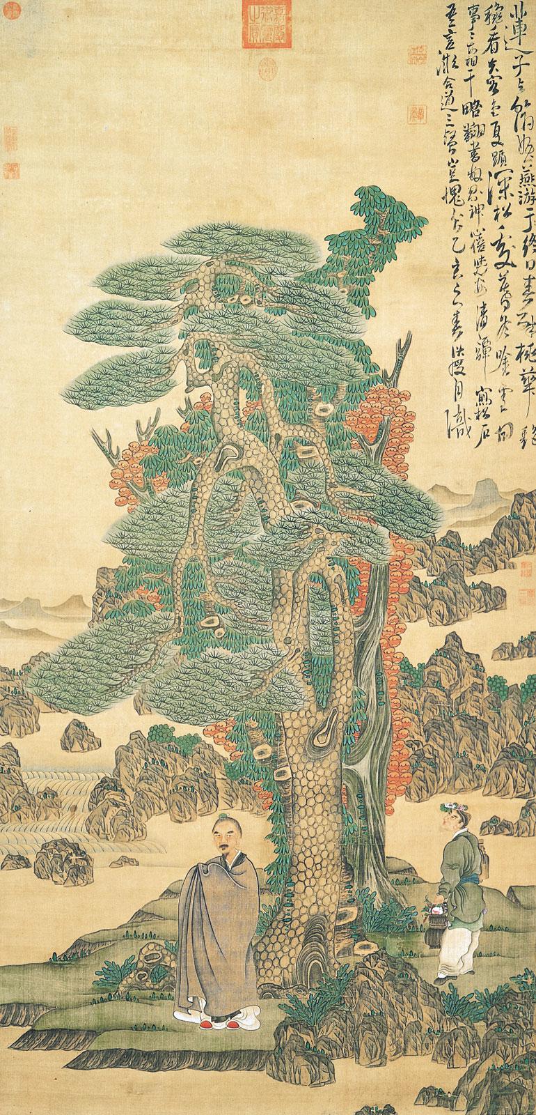 Pine and Logevity