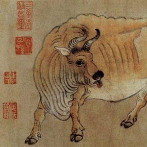 han-huang_five-bulls_1