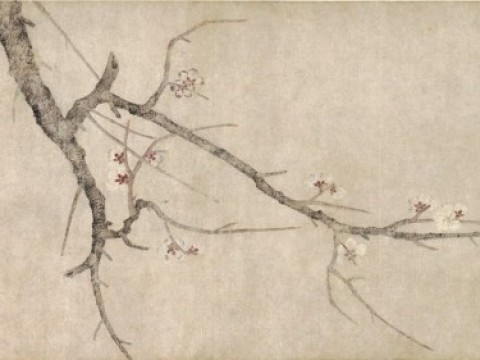 Plum Blossom Gallery