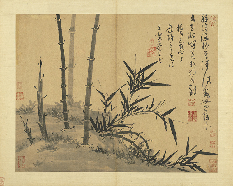 wu-zhen_manual-of-ink-bamboo_19s