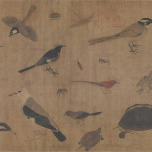 huang-quan_birds-sketched-from-life