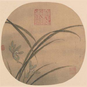 fan_orchid