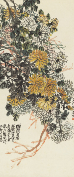 Old Chrysanthemum