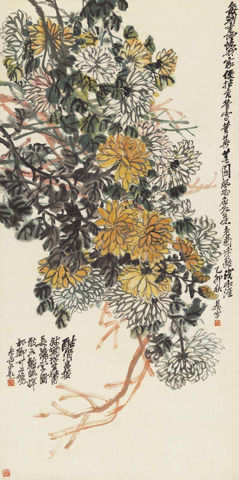 Old Chrysanthemum