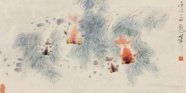 xugu_goldfish