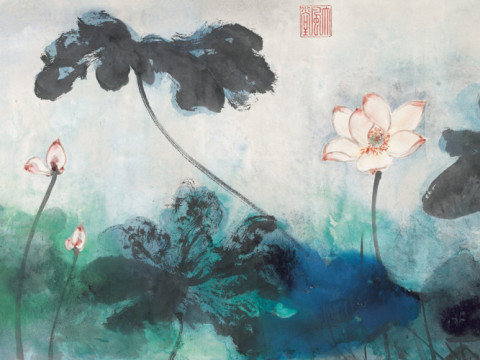 Lotus Gallery