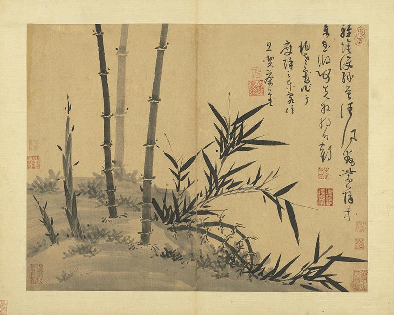 wu-zhen_manual-of-ink-bamboo_19s