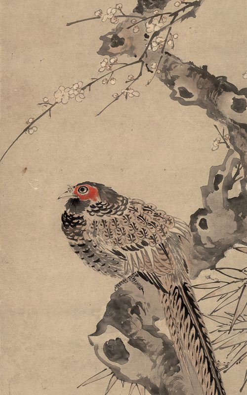 Plum Blossoms and Pheasant