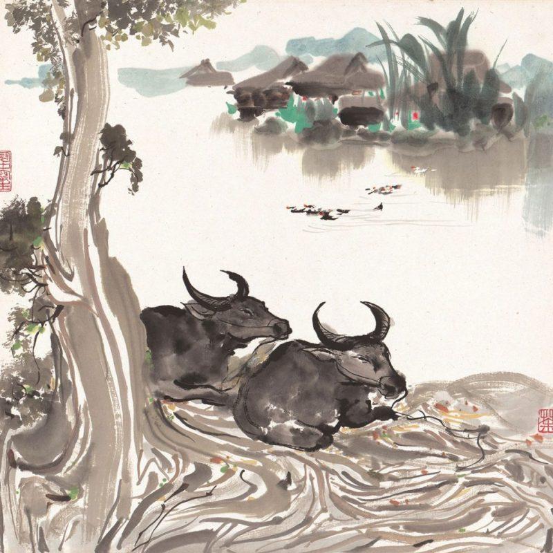 Twin Water Buffalo